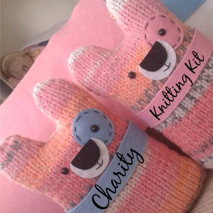 Charity Knitting Kit