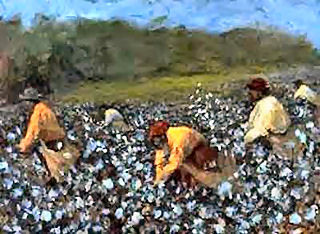 Cotton Pickers
