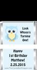 Owl First Birthday Boy Mini Candy Bars