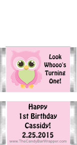 Owl First Birthday Girl Mini Candy Bars
