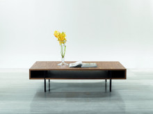 Italy Modern Feng Shui Coffee Table