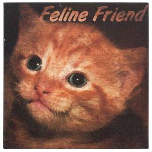 Canvas Cat Print - Feline Friend- Wall Art 35215