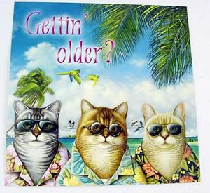 Cool Cats Birthday Card - BDS38290