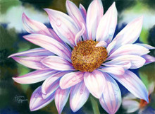 15 x 11 Daisy Delight II S510-16/500 Original Painting in Pastel Print by Susan Edgmon