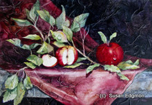 10 x 14.5 End of Season Apples S526-3/500 Original Painting in Watercolor Print by Susan Edgmon