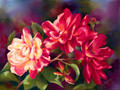 18 x 24 Mt Olive Roses S536-10/750 Original Painting in Pastel Print by Susan Edgmon