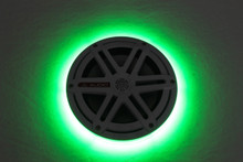 "JL Audio 7.7"" LED Rings - Sold as a Pair - Total of 2"