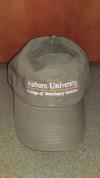 NEW: AUCVM Line Design Hat