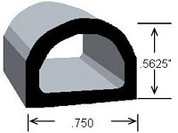 "CS135 ""D"" Section"