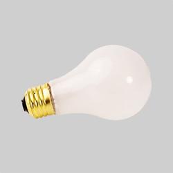 Bulb 7-100