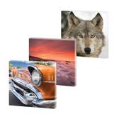 EcoArt 5 personalised panel 2 x (50 x 50cm) | 2 x (60 x 80cm) | 1 x (60 x 120cm)