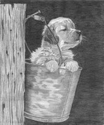 Puppy Pencil Sketch by Craig Cassell, a quadraplegic artist who draws with his mouth.