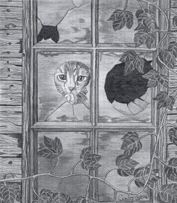 Kitten Pencil Sketch by Craig Cassell, a quadraplegic artist who draws with his mouth.