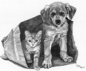Puppy and Kitten Playing Pencil Sketch by Craig Cassell, a quadraplegic artist who draws with his mouth.