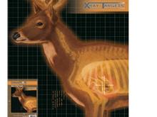 Champion X-Ray Paper Targets, Deer, 25x25  - 6pk