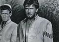 Yellowneck (1955) DVD