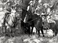 Prairie Rustlers (1945) DVD