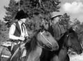 The Boss Cowboy (1934) DVD