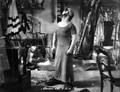 Akrobat Schööön! (1943) DVD