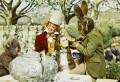 Alice's Adventures In Wonderland (1972) DVD