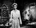 Monsoon (1952) DVD