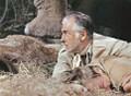 The Last Safari (1967) DVD