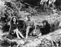 Tarzan The Ape Man (1932) DVD