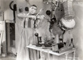 Palmy Days (1931) DVD