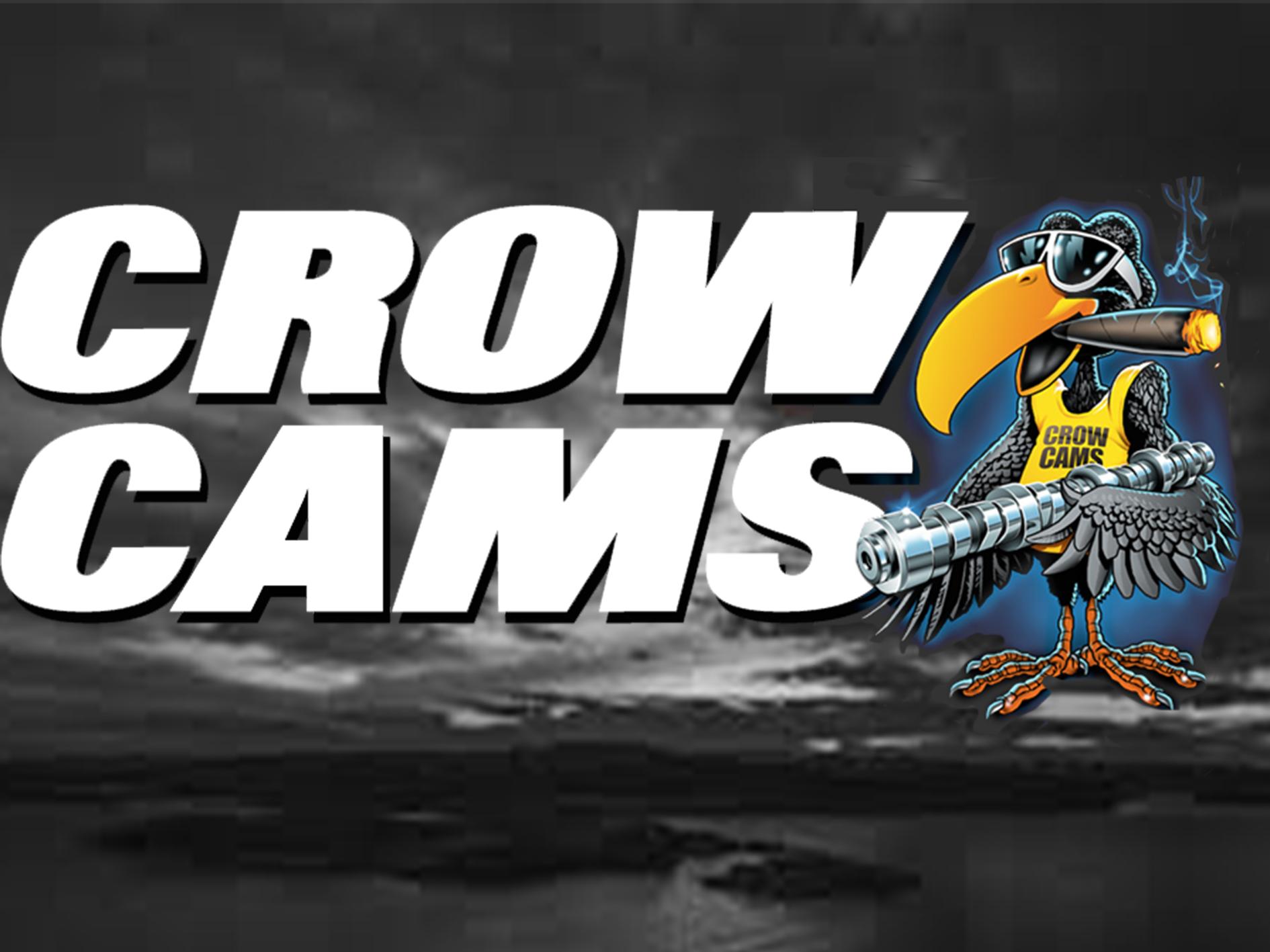 crow-cam.1.png
