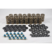 "PAC 1209 Dual Valve Spring Kit .700"" Lift"