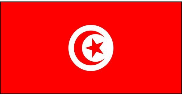 courses-in-Tunisia.png