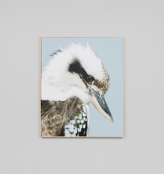 KOOKABURRA CANVAS