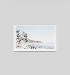 Tea Tree Bay - Framed Print