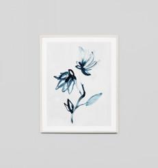 Indigo Flower 1