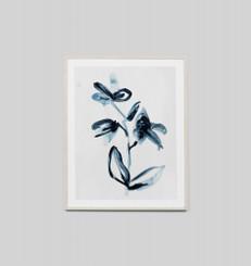 Indigo Flower 2