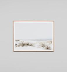 Sand Reed Dunes - Framed Print