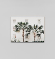 Palm Resort - Framed Canvas