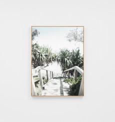 Shady Path Framed Canvas