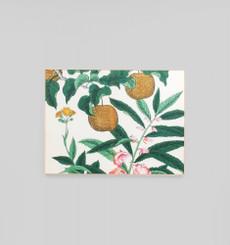Nashi Woodblock Framed Canvas