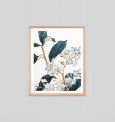 Perennial Woodblock 1