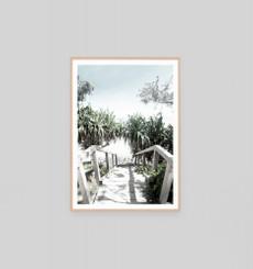 Shady Path - Framed Print