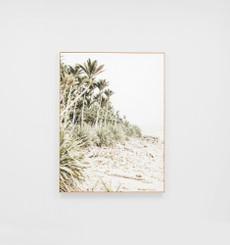 Jungle Shoreline Framed Canvas