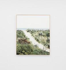 Through the Dunes Framed Canvas