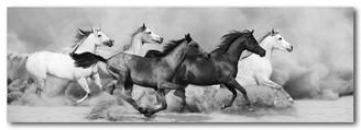 WILD HORSES - B & W - 158 X 53cm