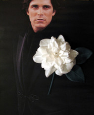 Men's Tuxedo Flower Wedding Jacket Boutonniere Prom Accessory White Camellia Silk Flower Pin