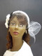 Champagne Camellia Wedding Birdcage Veil Headband Bridal Hair Accessory