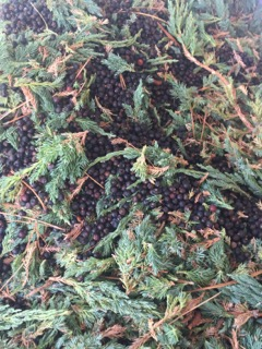 juniper-and-berries-to-distill.jpg