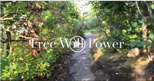 "Third Chakra Therapy ""Free Will Power"" (Downloadable Streaming Video)"