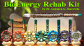 BioEnergy Rehab Kit