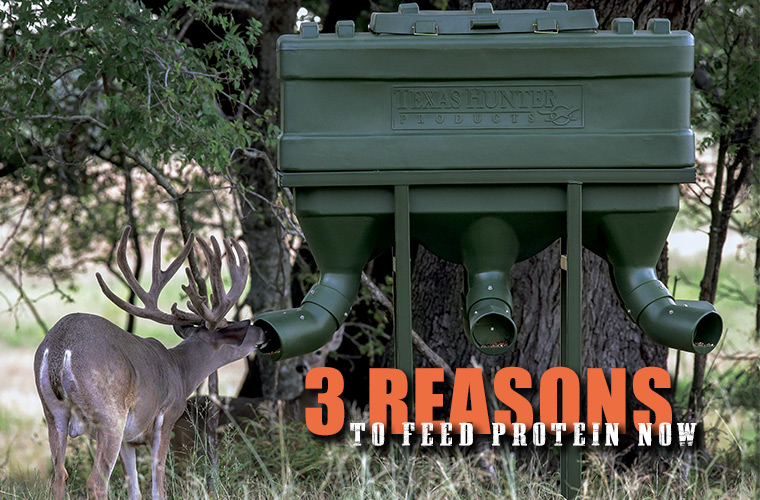 3 Reasons to Start Feeding Protein Now - Texas Hunter Products